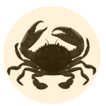 crab solo
